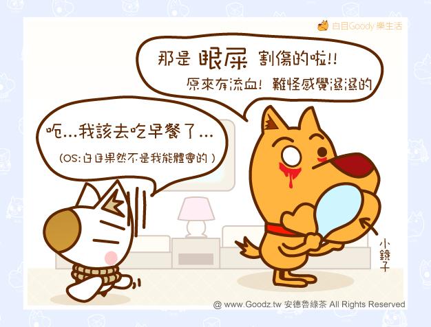 Goody:那是眼屎割傷的啦!原來有流血,難怪感覺濕濕的...咚咚:呃...我該去吃早餐了...(OS白目果然不是我能體會的)