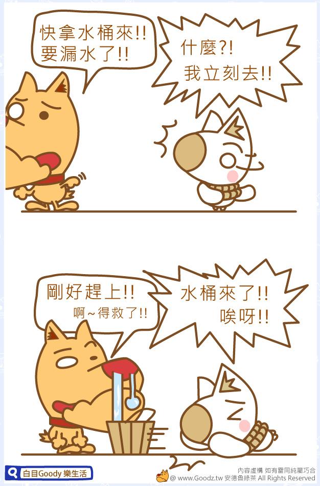 【Goody 樂生活】啊!漏水了!